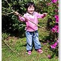 陽明山花季IMGP7195