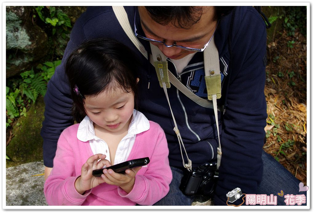 陽明山花季IMGP7206