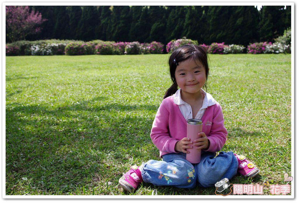 陽明山花季IMGP7222