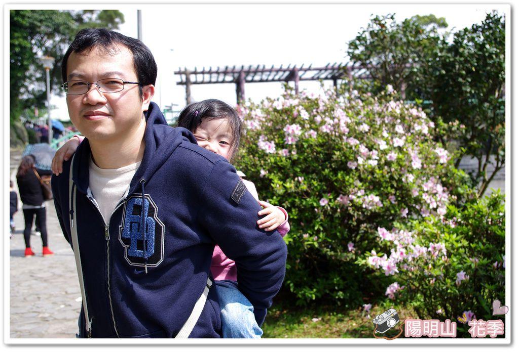 陽明山花季IMGP7228