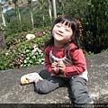 天元宮IMG_6986 20110313.JPG