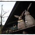兔子P2270163 20110227.JPG
