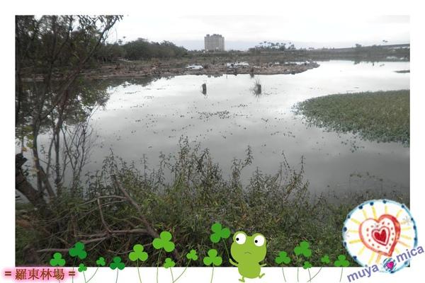 羅東林場(白)0008.jpg