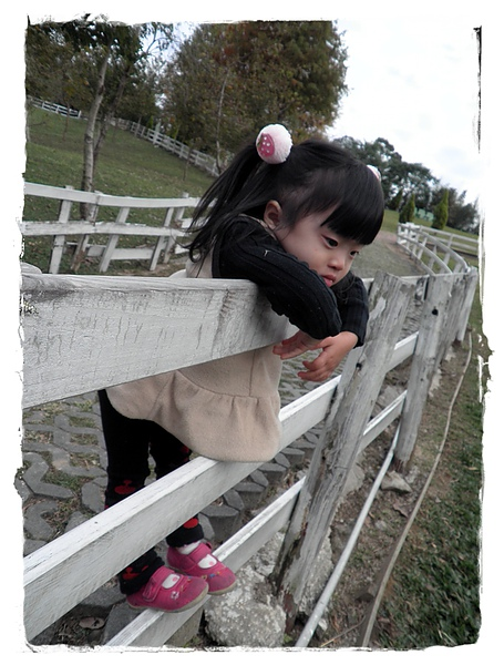 2011家庭旅遊day4PC100253001.jpg