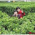 2010家庭旅行021.jpg