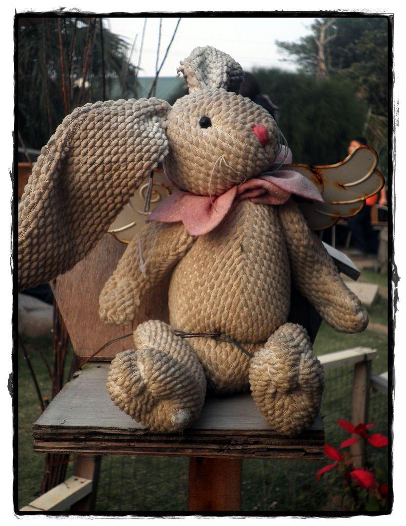 兔子P2270154 20110227.JPG