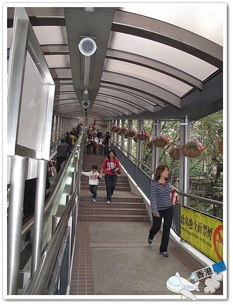 香港day- 20110320 IMG_7700.JPG
