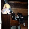 兔子P2270177 20110227.JPG