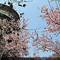 天元宮IMG_6988 20110313.JPG