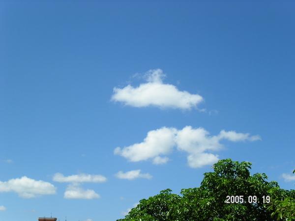 20050919-房間裡 拍天空