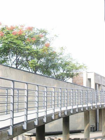 20061015 鶯歌陶瓷嘉年華 (103).JPG
