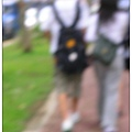 20080329-青年踏青去-03.jpg