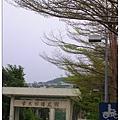 20080329-青年踏青去-06.jpg