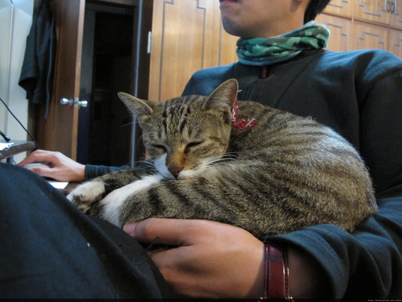 20101212泡泡跟虎妹-010.JPG