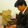 20081214-虎斑小貓三兄弟-21.JPG