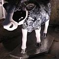 20090101-2009台北奔牛節華山館-68.JPG