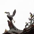 20110502-初訪林氏宗廟-018.JPG