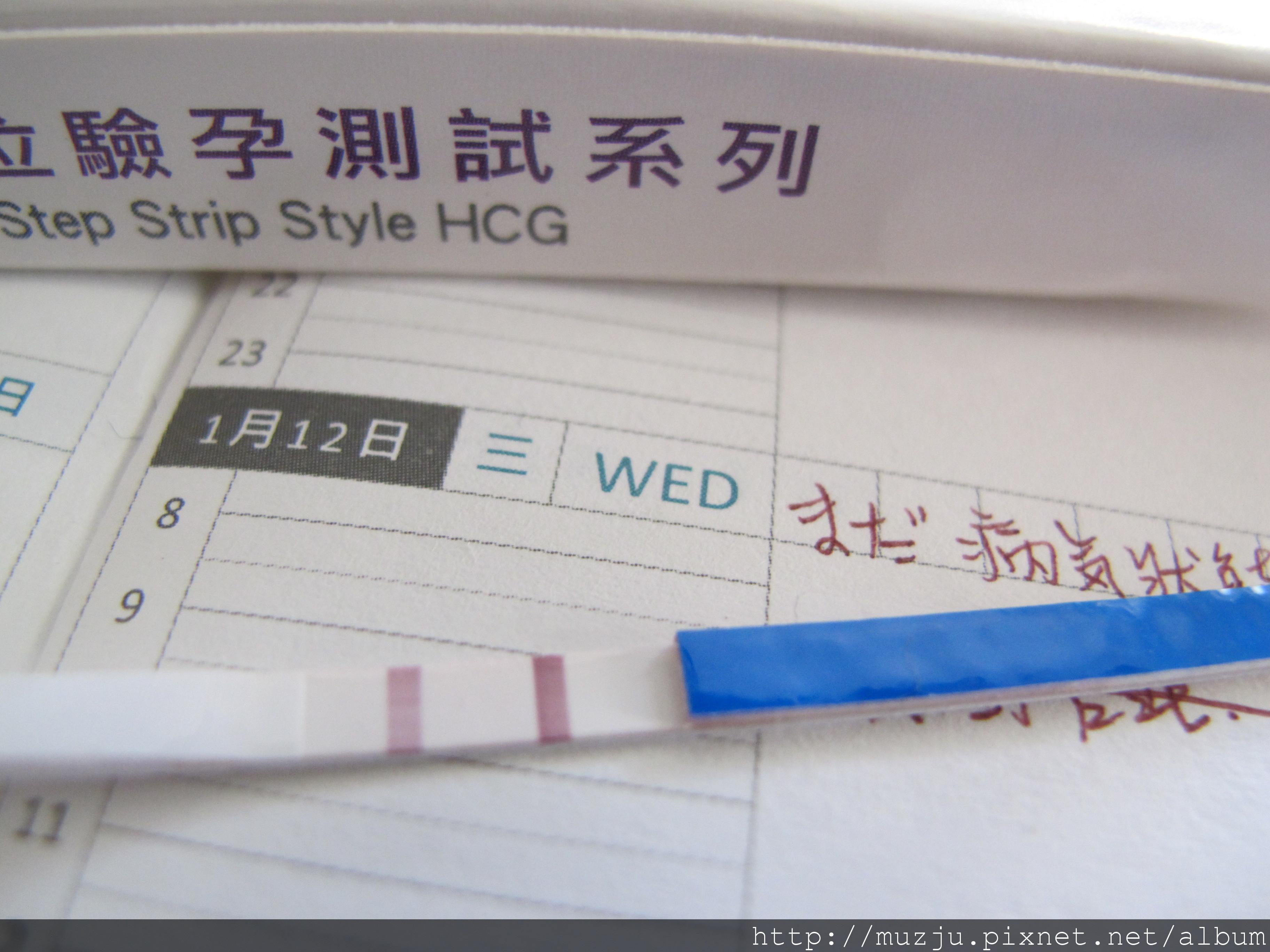 20110117-驗孕紙-001.JPG