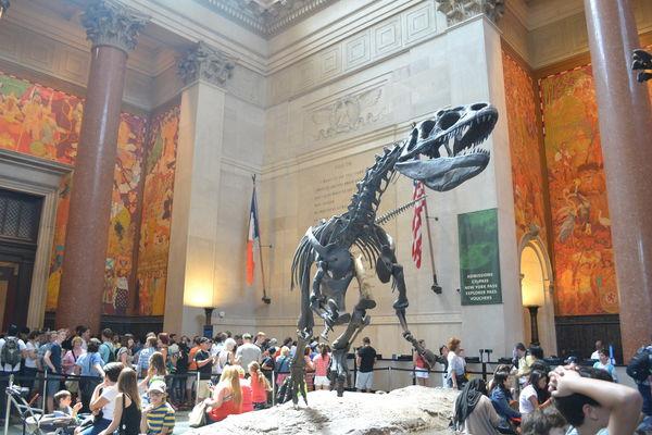 12自然博物館恐龍.jpg
