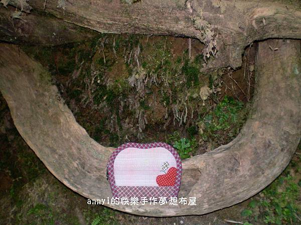 小小Su蘋果收納袋part1-06