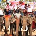 Elephant-Back-Wedding01_3