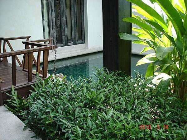 DSC08959蘇美島Anantara Lawana酒店.JPG