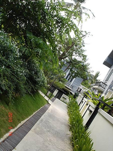 DSC09035蘇美島Anantara Lawana酒店.JPG