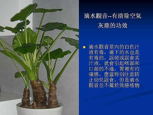 家庭常見植物的功效 (2).JPG