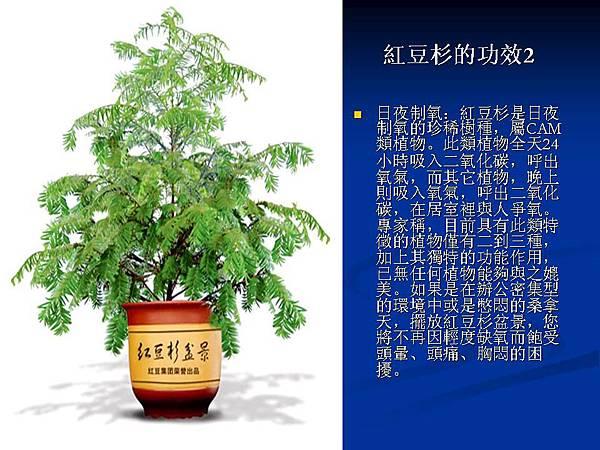 家庭常見植物的功效 (22).JPG