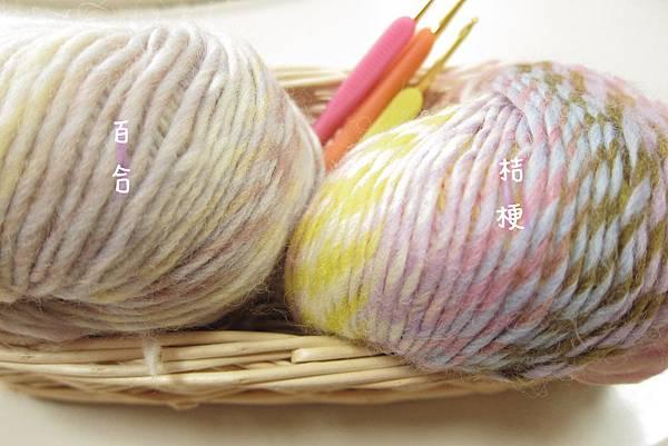 2011/5 卉彩