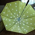 LED_umbrella-3.jpg