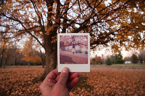 polaroid 05.jpg