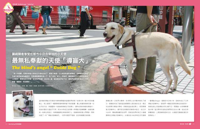 Mydog-3601-特別企劃-導盲犬_Pcover