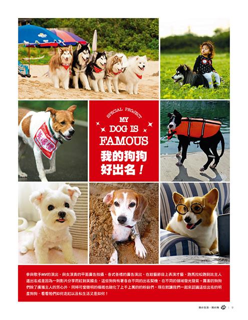 Mydog-4801_P9.jpg