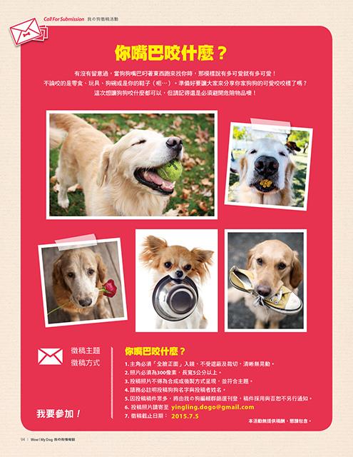 Mydog-4813_P94.jpg