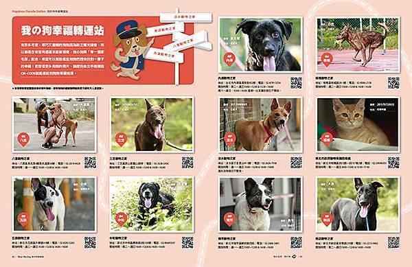 Mydog-5910_我的狗幸福轉運站.jpg