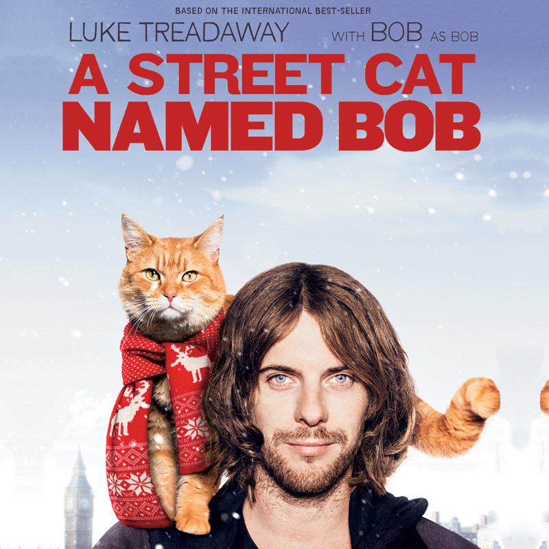 street-cat-named-bob-dvd.jpg