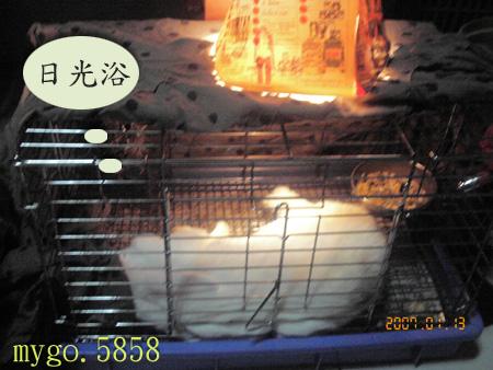 070127取暖2.jpg