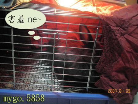 070127取暖3.jpg