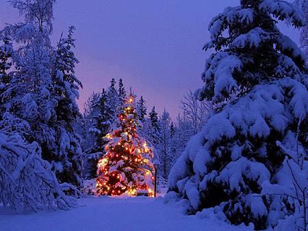 聖誕節2.jpg