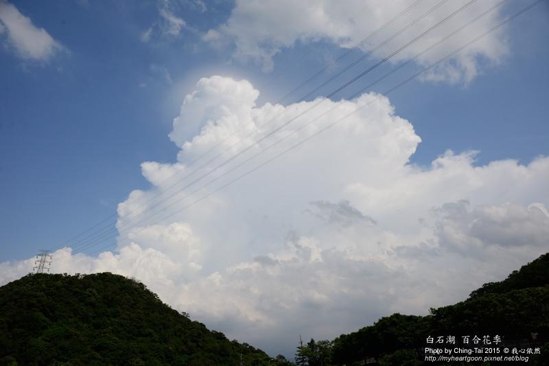 TAI_0704.jpg