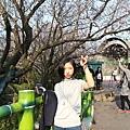 IMG_7248.JPG