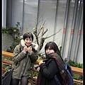 高山植物區~好冷ㄟ!!!