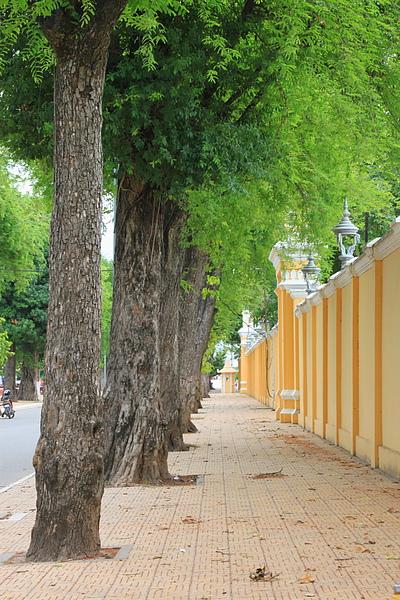 皇宮Royal Palace圍牆外
