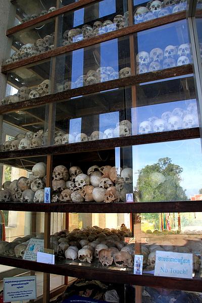 分層擺放著此處挖掘出的受害者頭骨