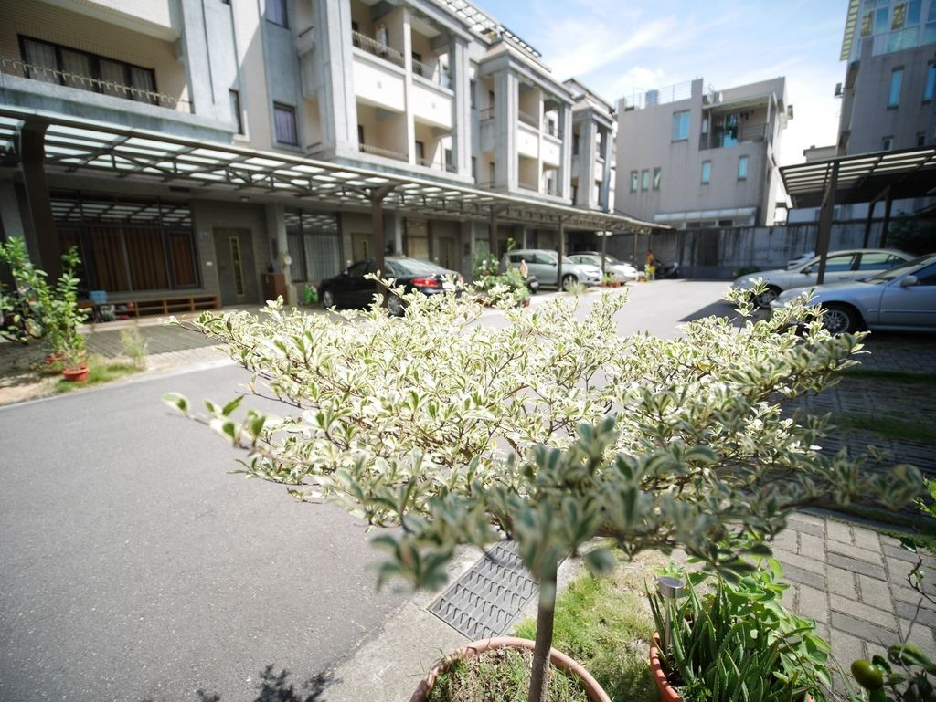 紫藤園_171006_0005.jpg