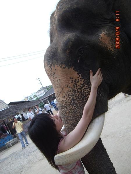 我也想當那隻大象.jpg