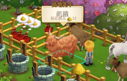 高地乳牛 (3)