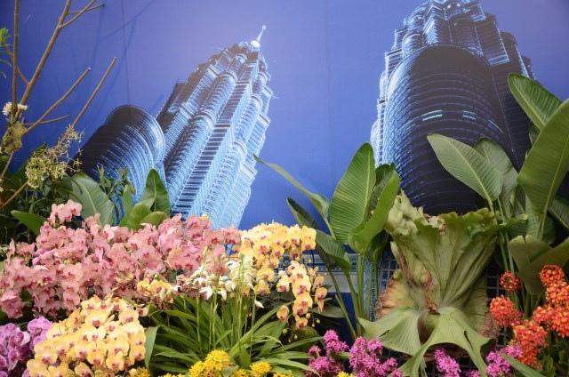 2013Bloom台灣國際蘭展 (35)
