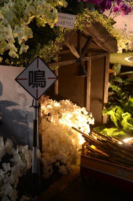 2013Bloom台灣國際蘭展 (23)